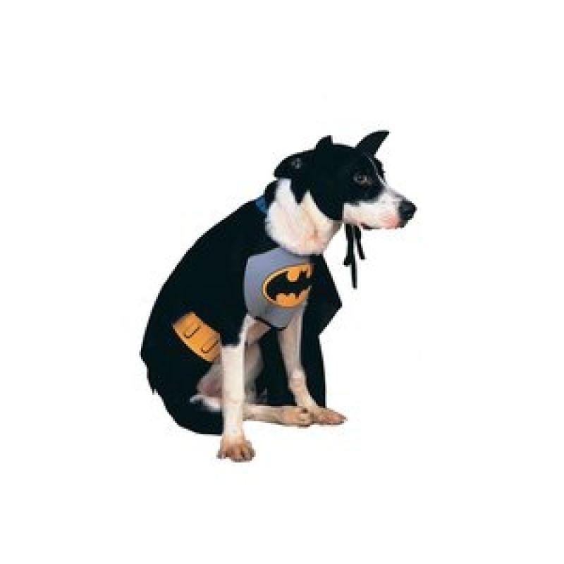 Bild på Batdog hundmaskerad