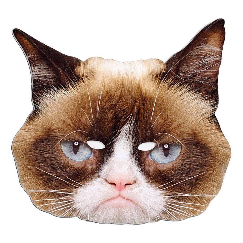 Bild på Grumpy Cat Pappmask - One size