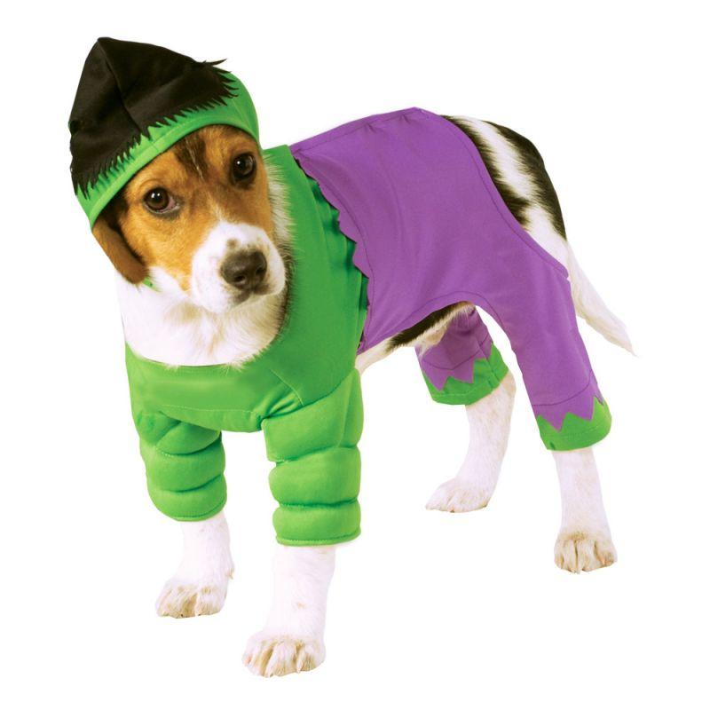 Bild på Hulken Hund Maskeraddräkt - Small