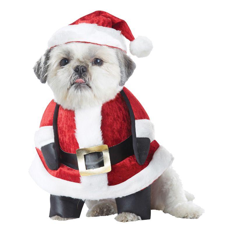 Bild på Jultomte Hund Maskeraddräkt - Small