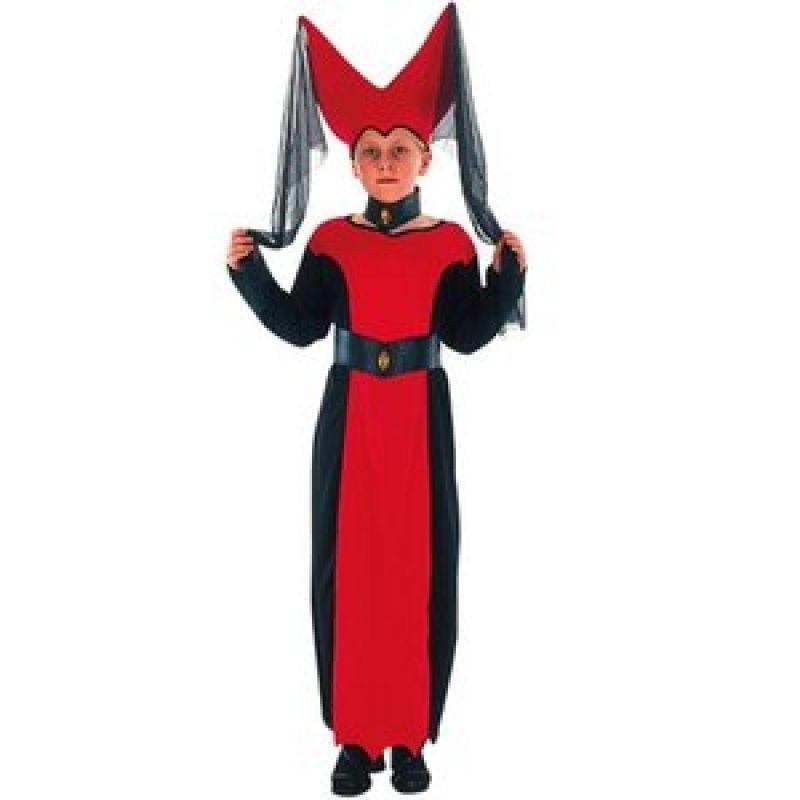 Bild på Medeltida drottning maskeraddräkt