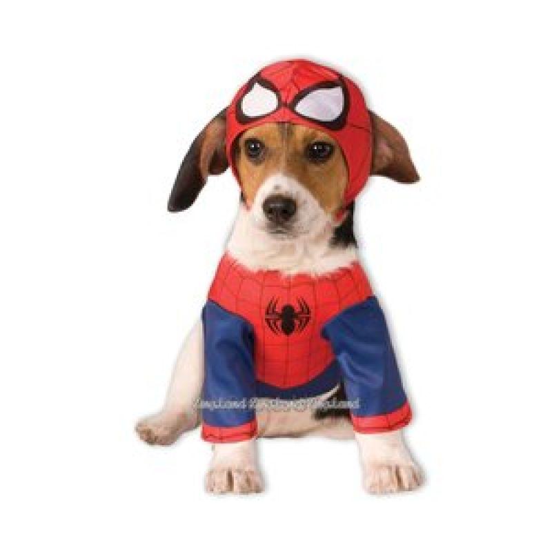 Bild på Spindelmannen hundmaskerad