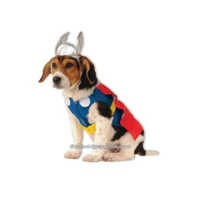 Bild på Thor husdjursmaskerad