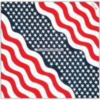 Bild på Amerikanska flaggan bandana/scarf