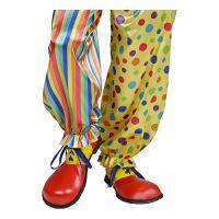Bild på Clownskor Stora - One size
