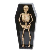 Bild på Dansande Skelett i Kista Prop