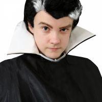 Bild på Draculaperuk  barn