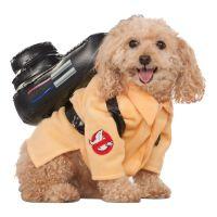Bild på Ghostbusters Hund Maskeraddräkt - Small