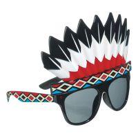 Bild på Glasögon med Indianskrud