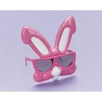 Bild på Kanin solglasögon
