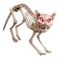 Bild på Kattskelett med Ljud & Ljus Prop