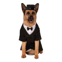 Bild på Kostym Hund XL Maskeraddräkt - XX-Large