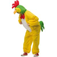 Bild på Kycklingdräkt