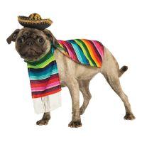Bild på Mexiko Hund Maskeraddräkt - Small
