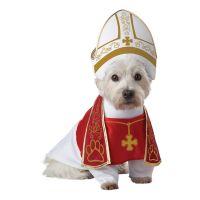 Bild på Påve Hund Maskeraddräkt - Small