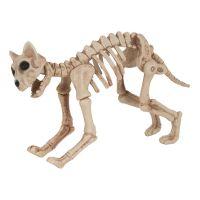 Bild på Skelettkatt Prop