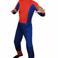 Bild på Spindeldräkt