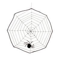 Bild på Spindelnät