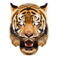 Bild på Tiger Pappmask