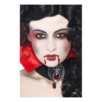 Bild på Vampyr Sminkset