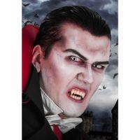 Bild på Vampyr Sminkset Med Linser